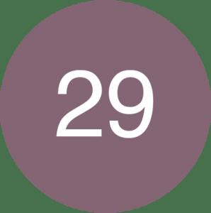 29  Plum
