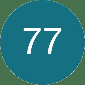 77 Petrol