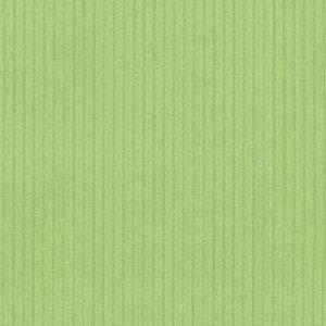Manchester 41 appel groen