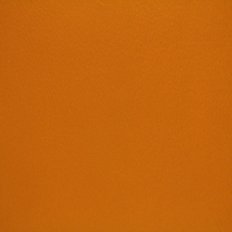 1444 Apricot