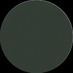 81 Donker groen